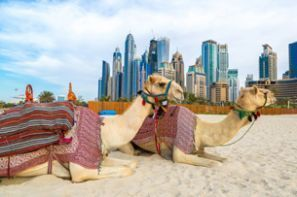 Forenede Arabiske Emirater